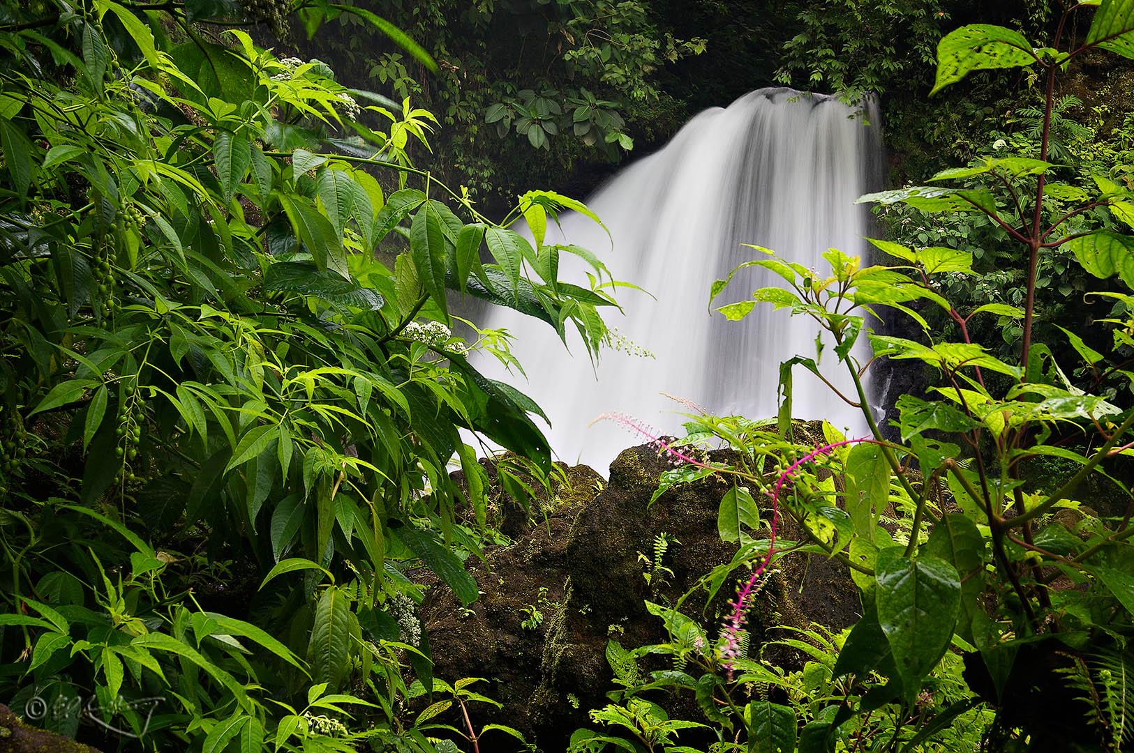 Arenal_Falls