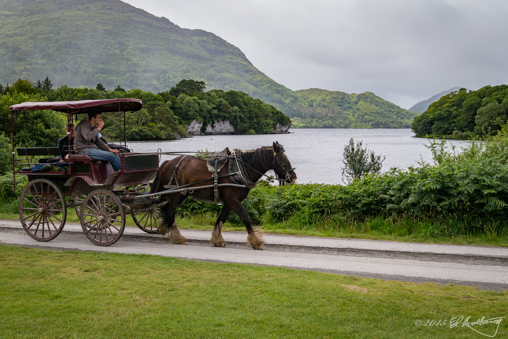 Ireland_2015-52
