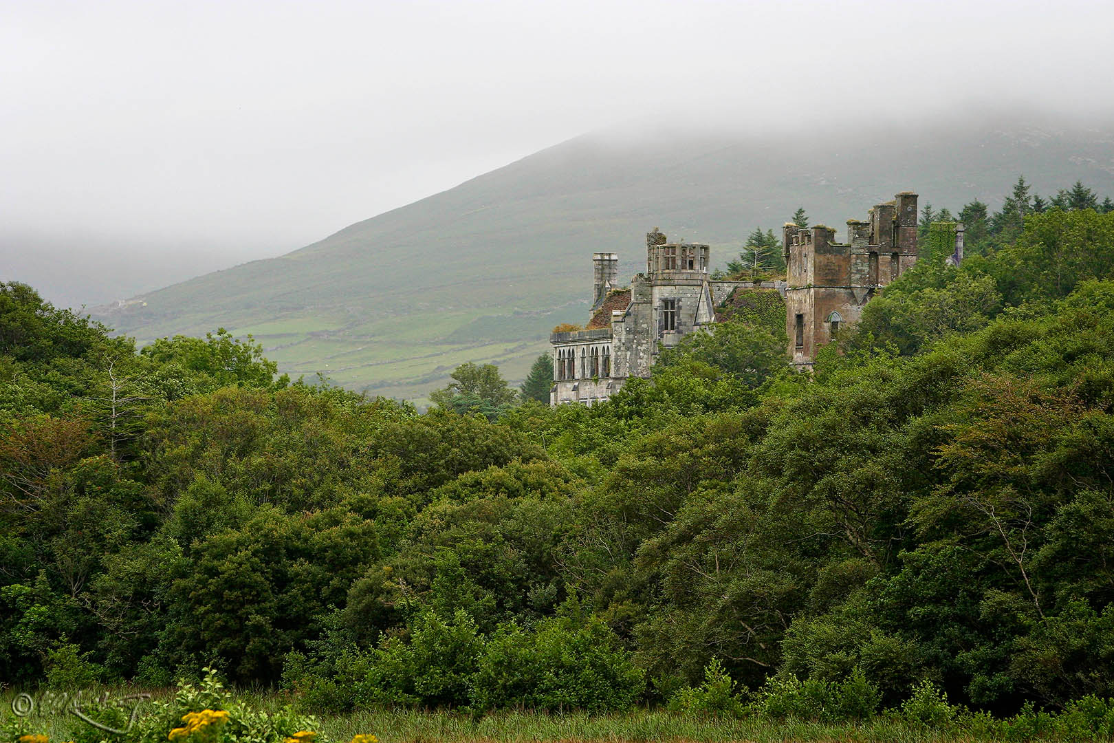 Puxley_Manor_at_Dunboy_Castle